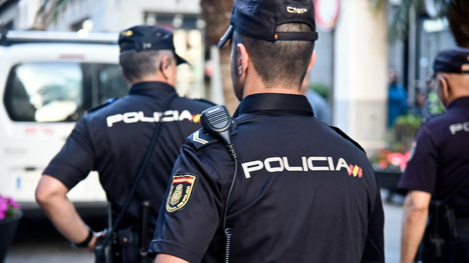 Detingut a Bèlgica el fill de la dona assassinada a l'Arenal