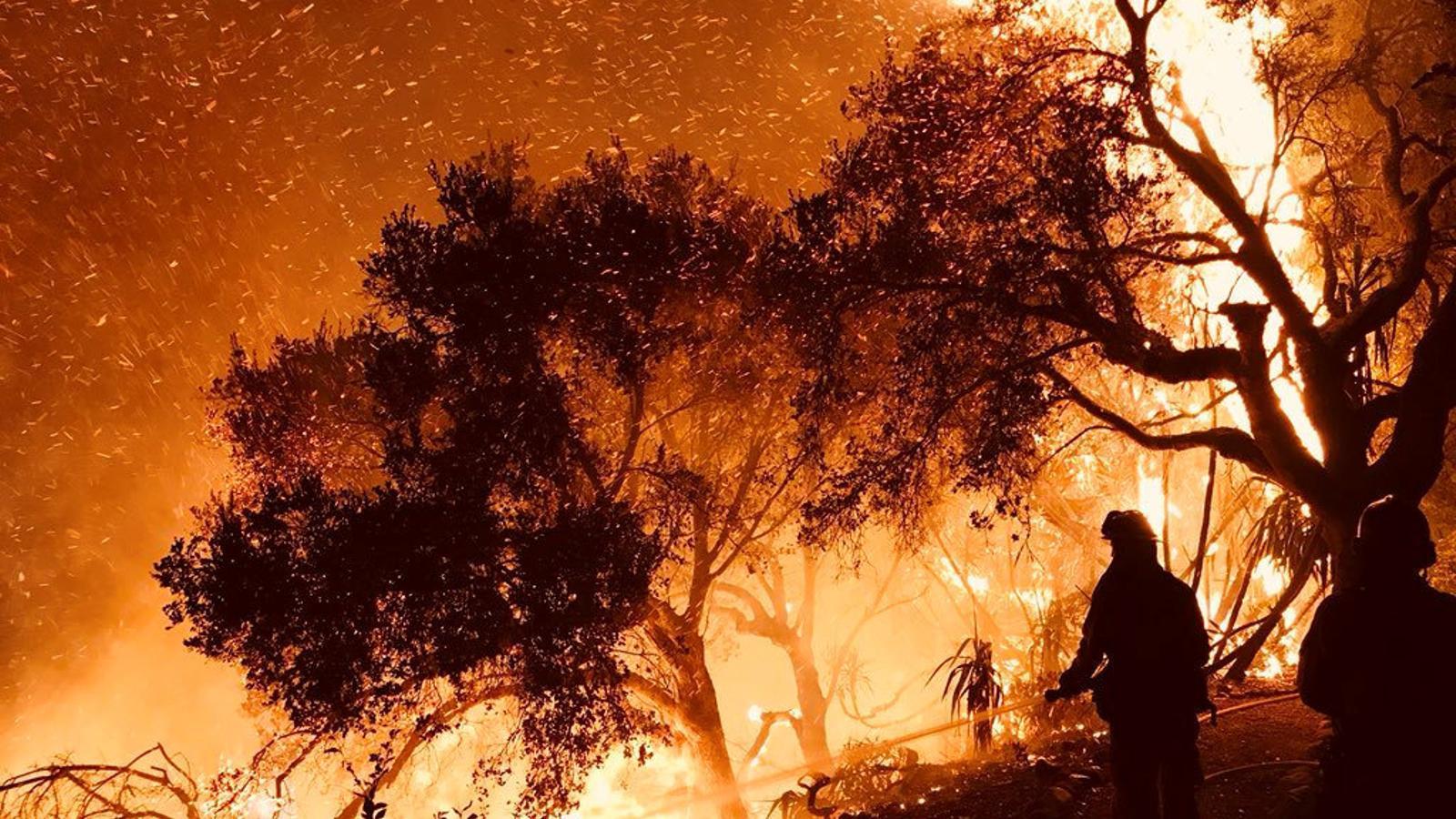 Les flames avancen sense control pel sud de l'estat de Califòrnia