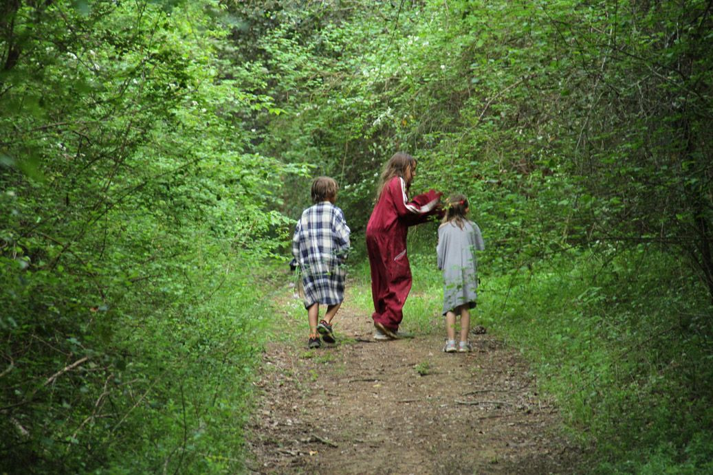 rierakids__in_the_forest_familiar_nature
