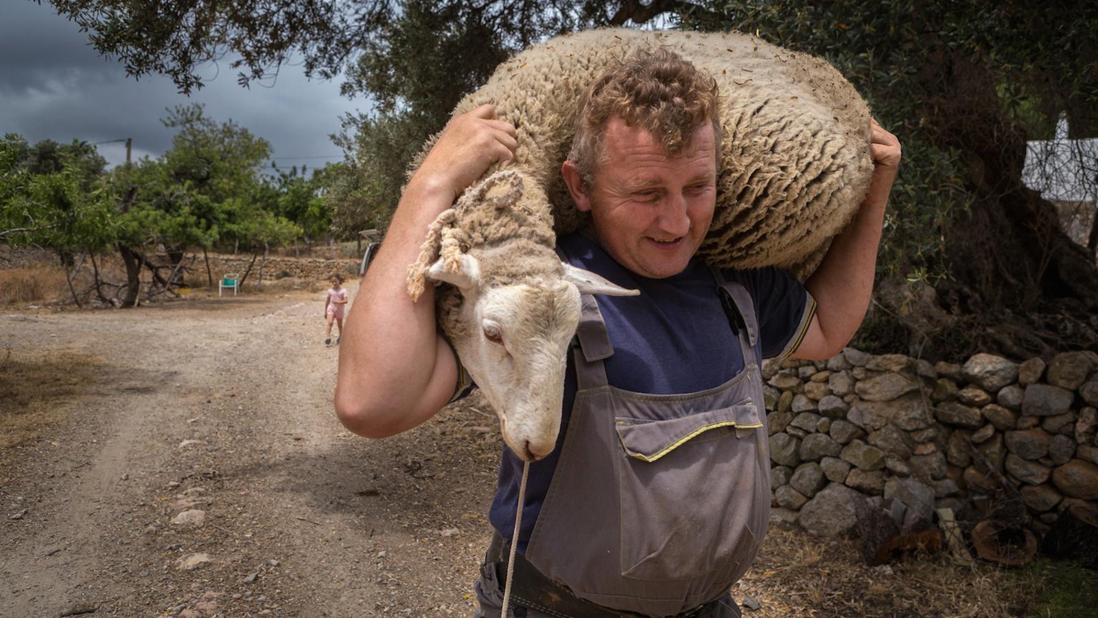 Els germans que mai van deixar de comptar ovelles