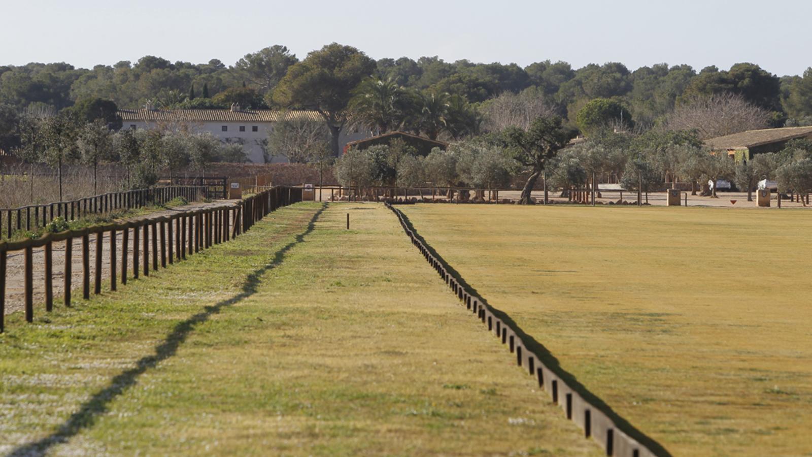 Terrenys de Sa Barralina, en zona ANEI / ISAAC BUJ