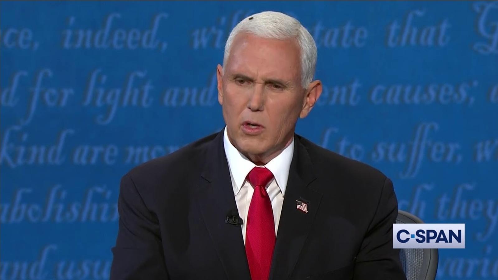 Una mosca sobre elc ap de Mike Pence, en el debat de candidats a la videpresidència dels EUA.