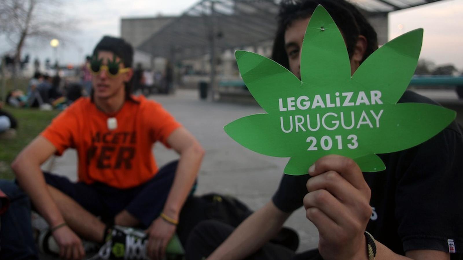 L'Uruguai comença a vendre marihuana per competir amb el narcotràfic