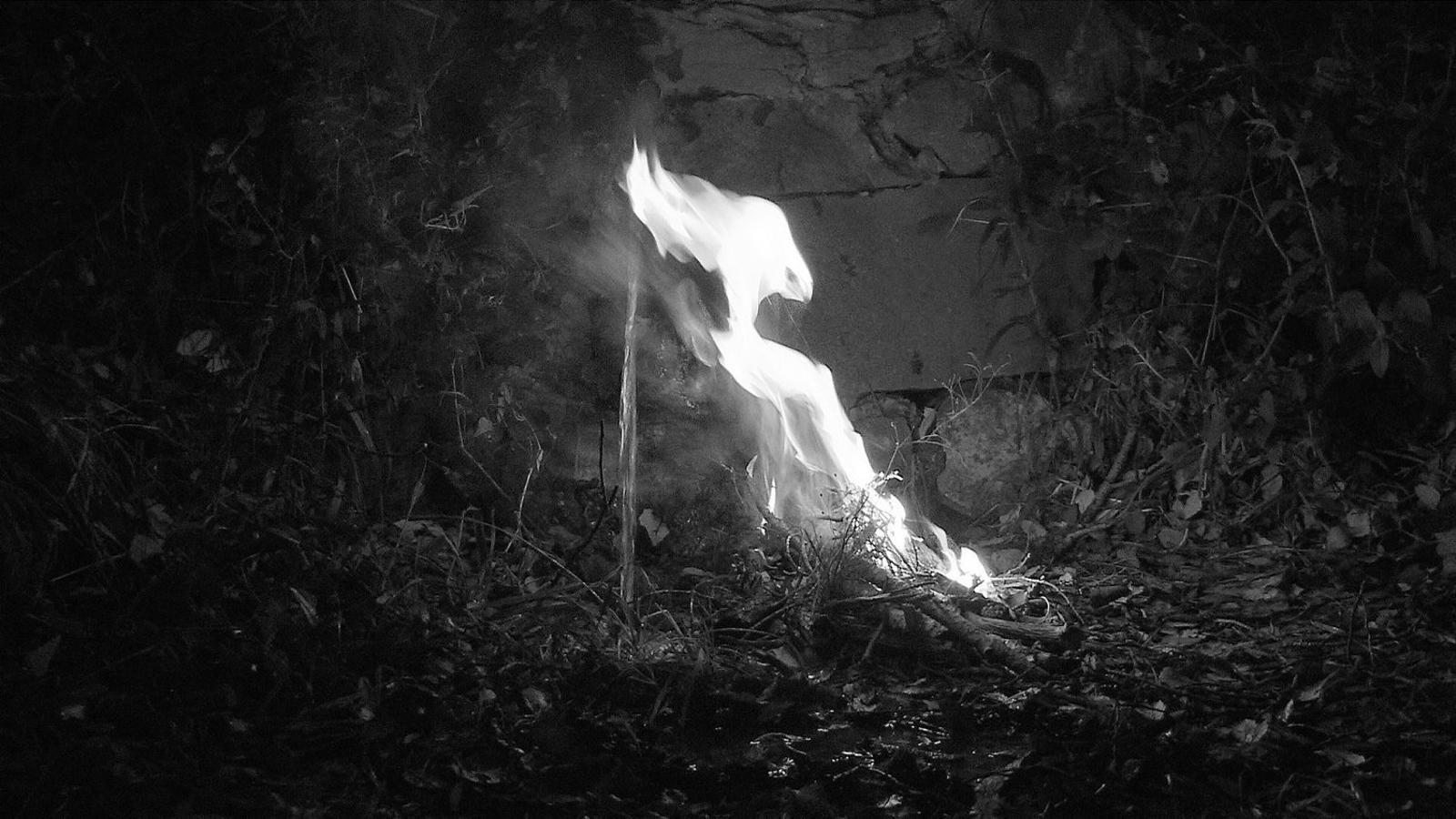El foc dirà