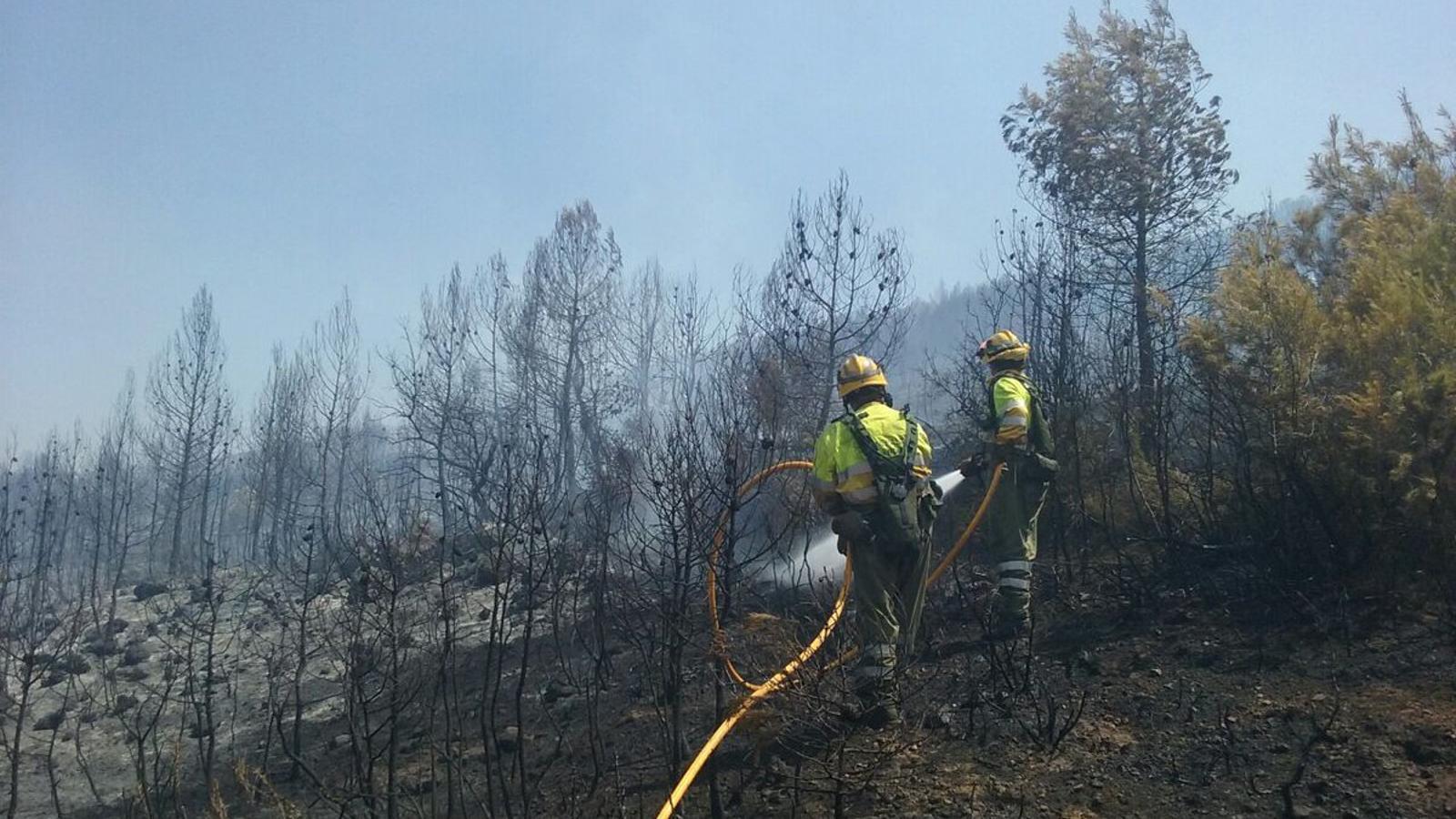 Imatge d'efectius de les brigades forestals de la Generalitat Valenciana fent tasques d'extinció en l'incendi declarat a la serra de Mariola, a Bocairent.
