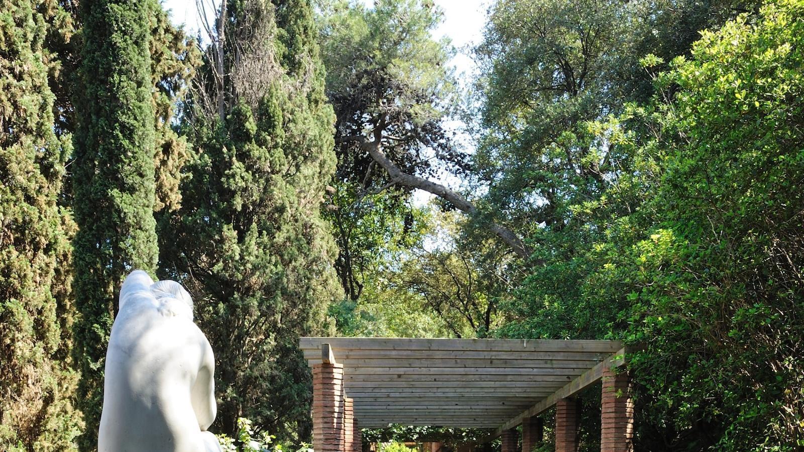 El roserar de la Colla de l'Arròs és la part més extensa i plana dels jardins de Laribal