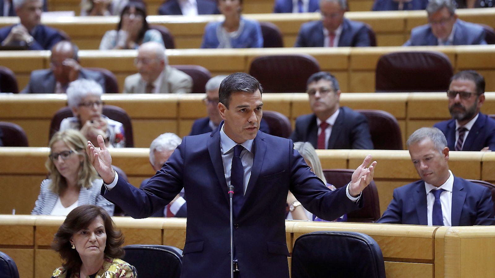 Pedro Sánchez, al Senat / EFE