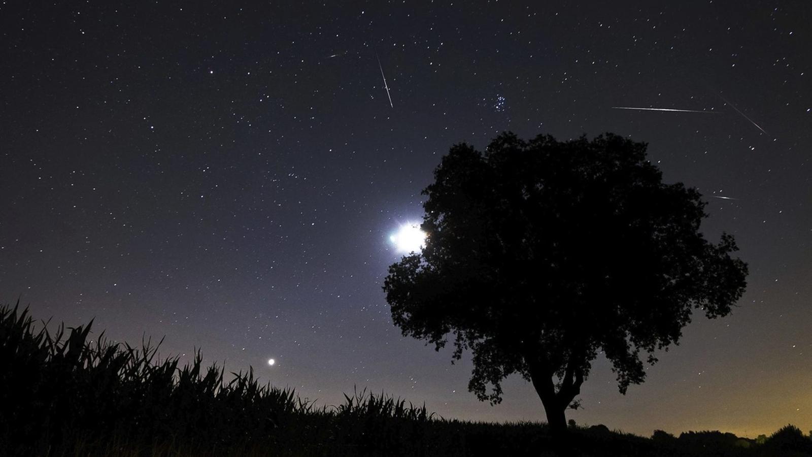 Arriben els Gemínids, la pluja d'estels més important de l'any