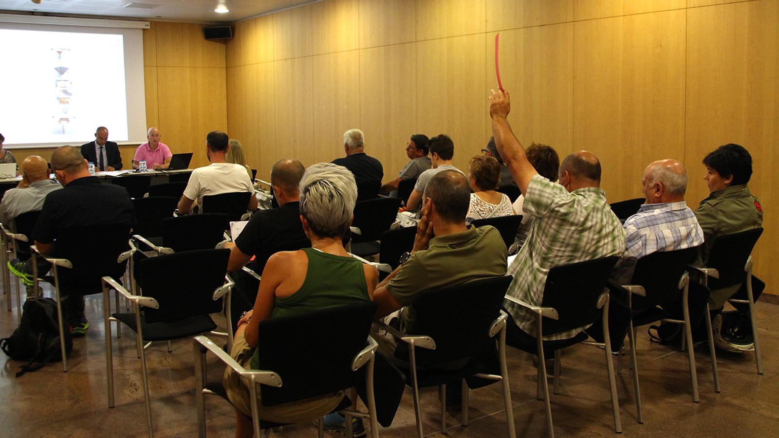Un moment de la subhasta que s'ha fet al Centre de Congressos d'Andorra la Vella. / M. F. (ANA)