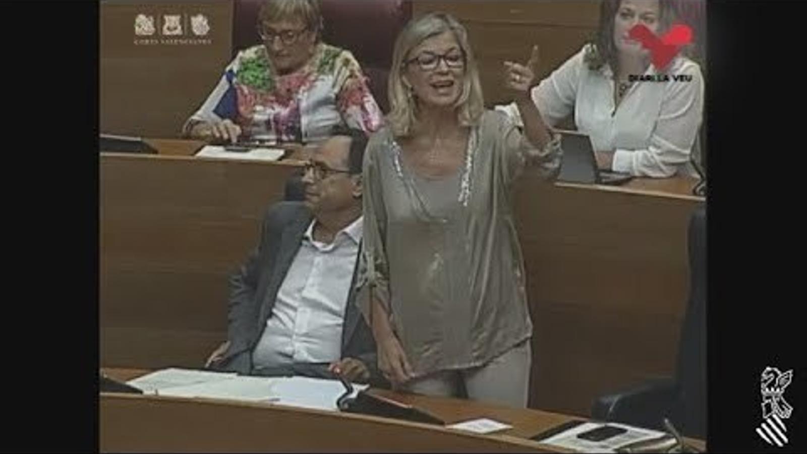 Intervencions en el debat de les Corts Valencianes