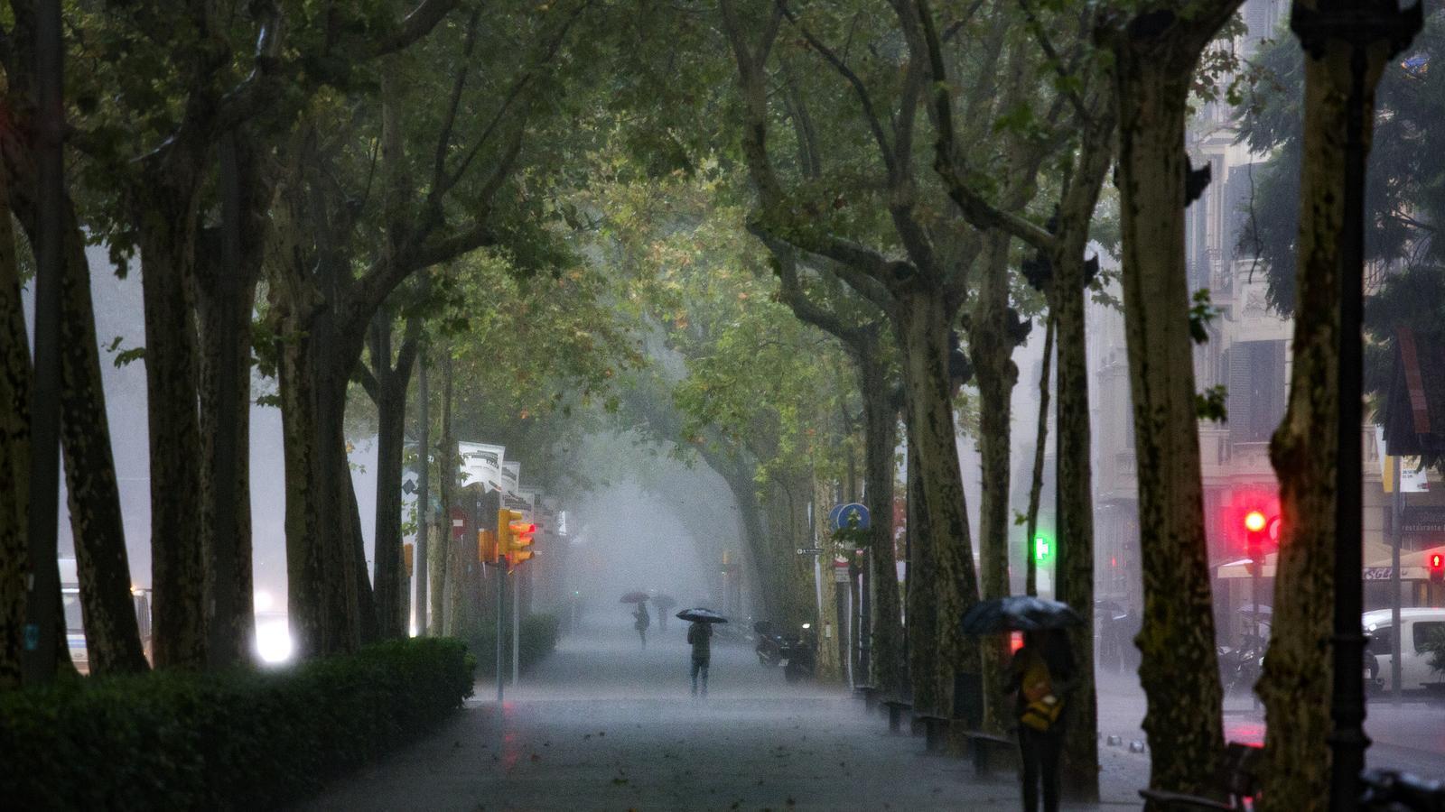 Pluja a la Gran Via de Barcelona, aquest matí