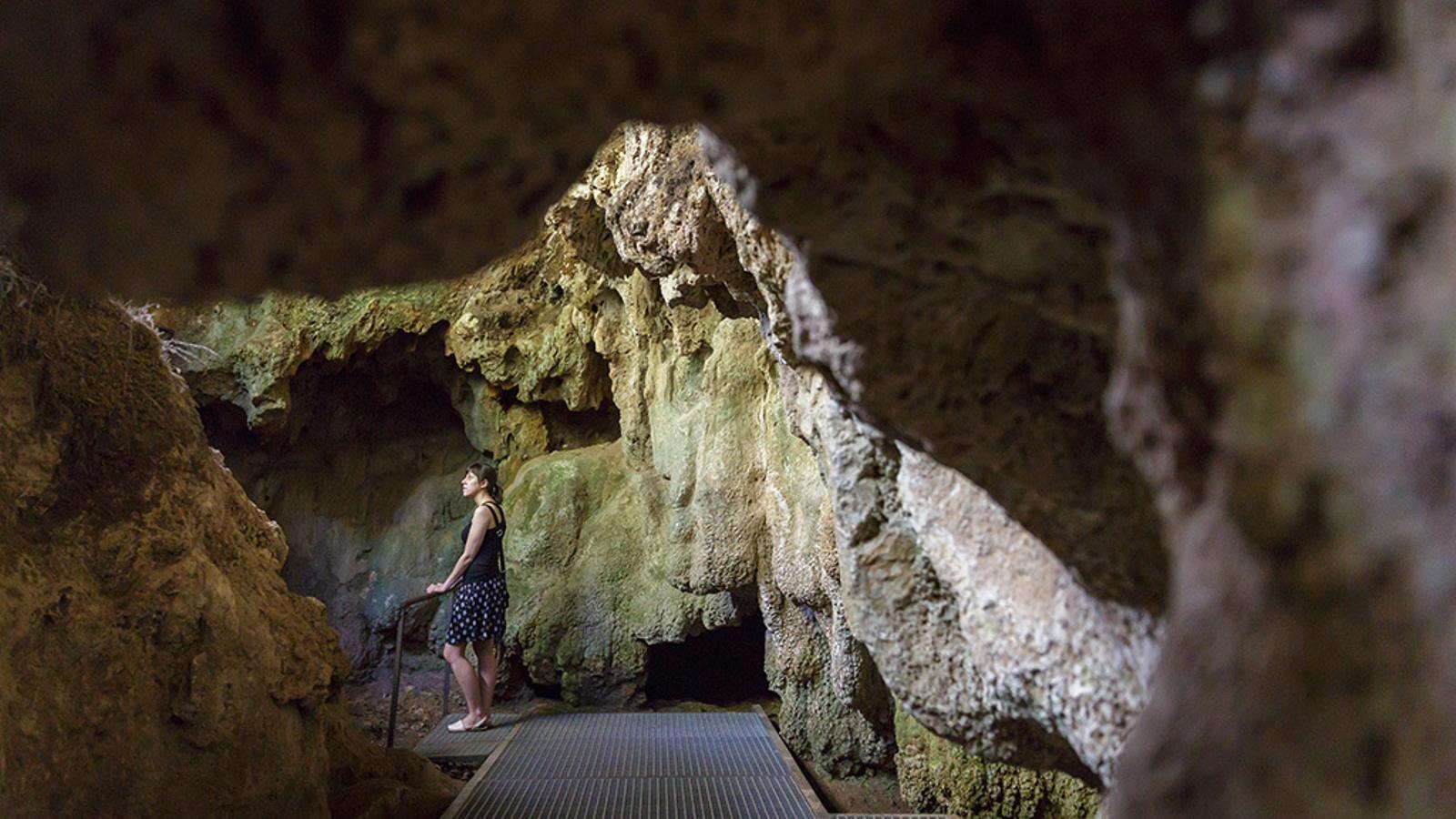 Parc de les Coves prehistòriques de Serinyà