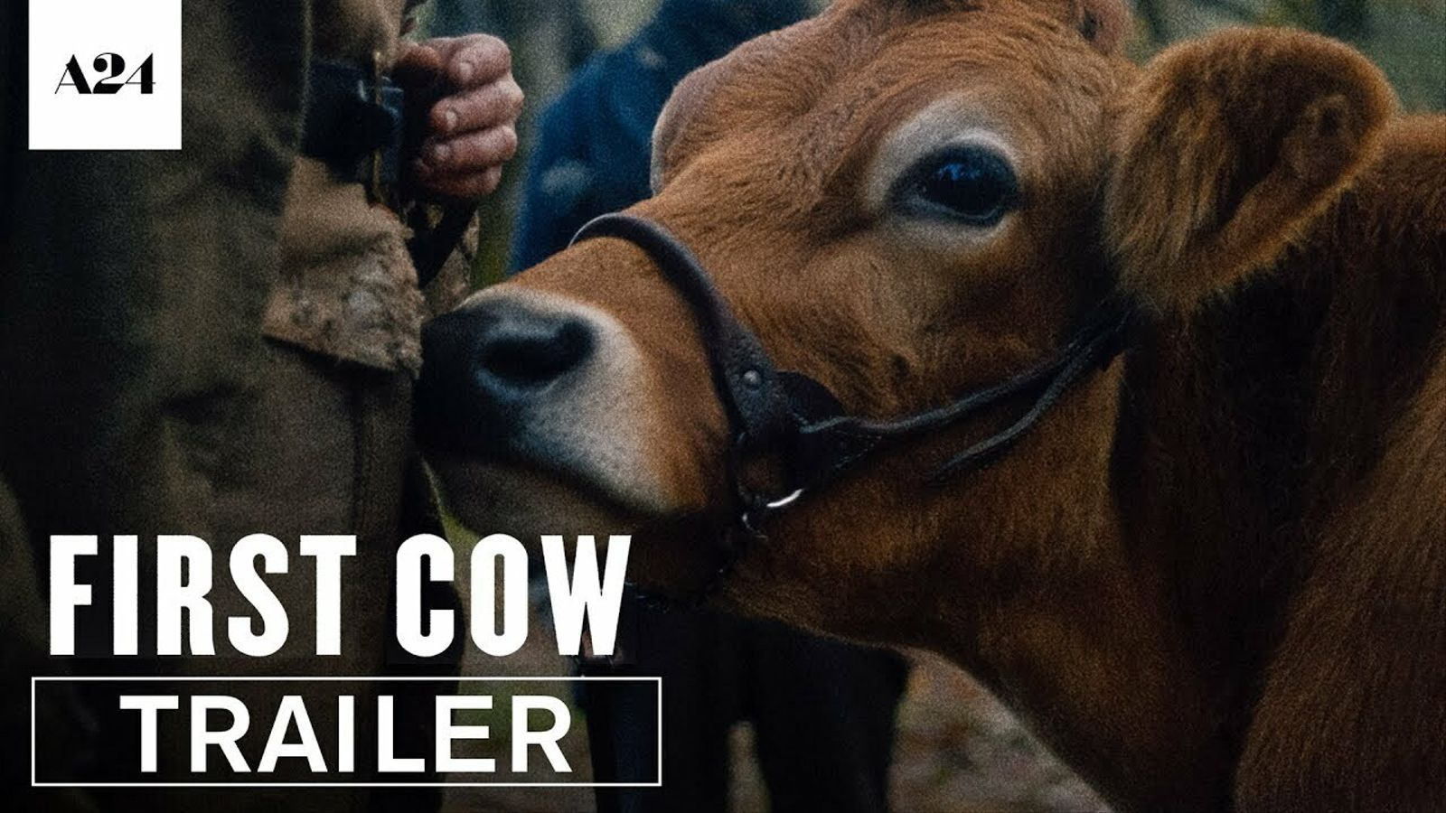 Tràiler de 'First cow', de Kelly Reichardt