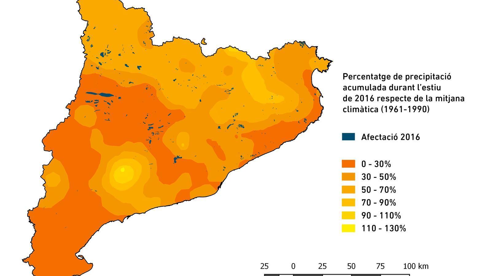 El  2,2% dels boscos catalans va patir els efectes de la sequera de l'estiu