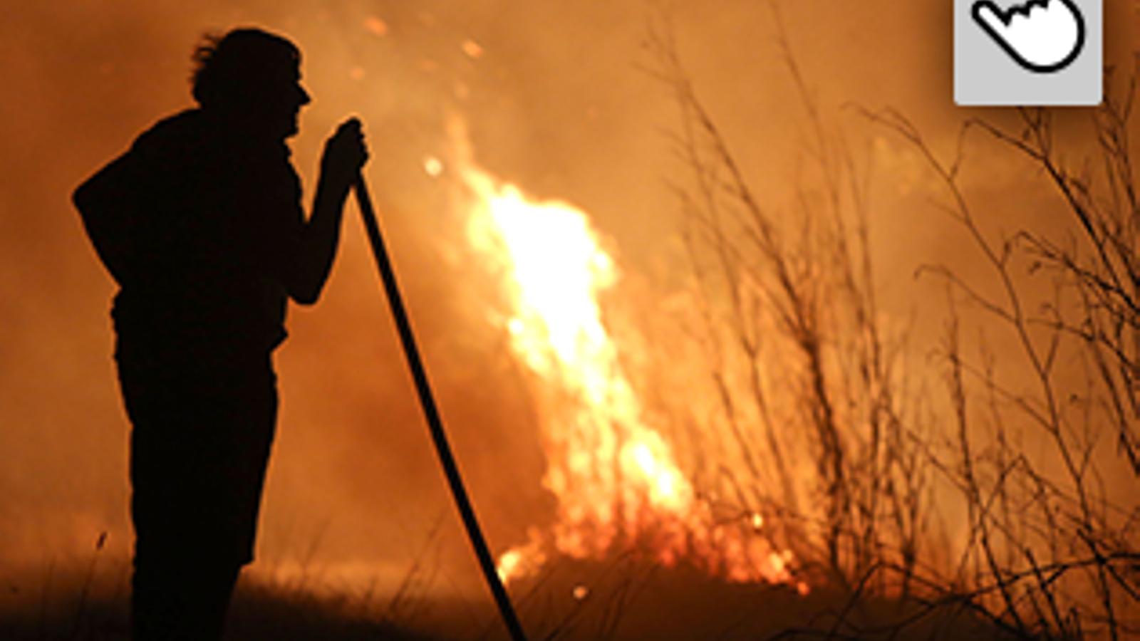 incendis forestals