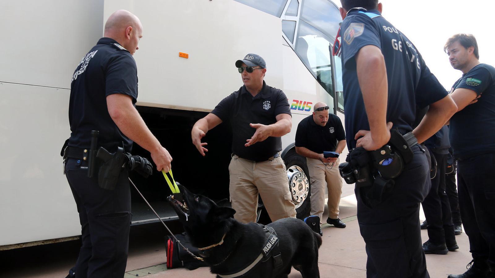 Els gossos antidroga entren a  La classe d'un institut de Girona