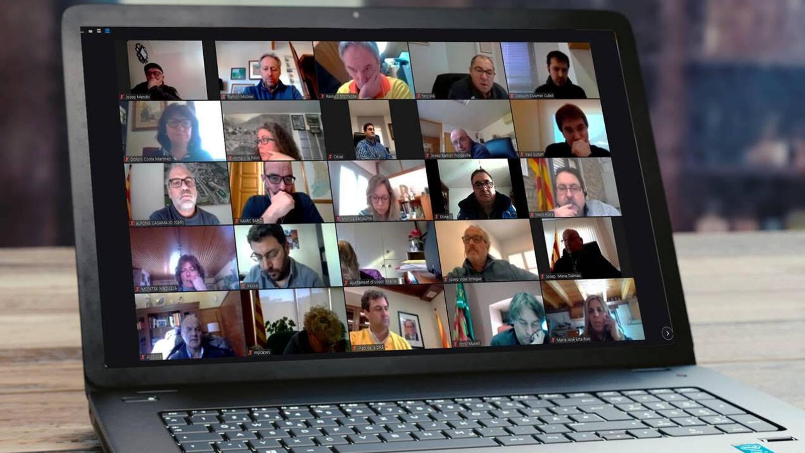 Un moment de la reunió virtual de càrrecs electes pirinencs. / CCR