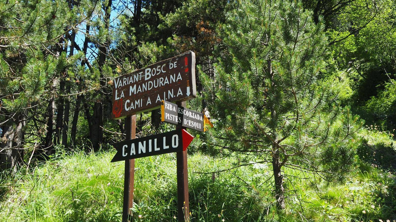 Camins forestals de Canillo. / COMÚ DE CANILLO