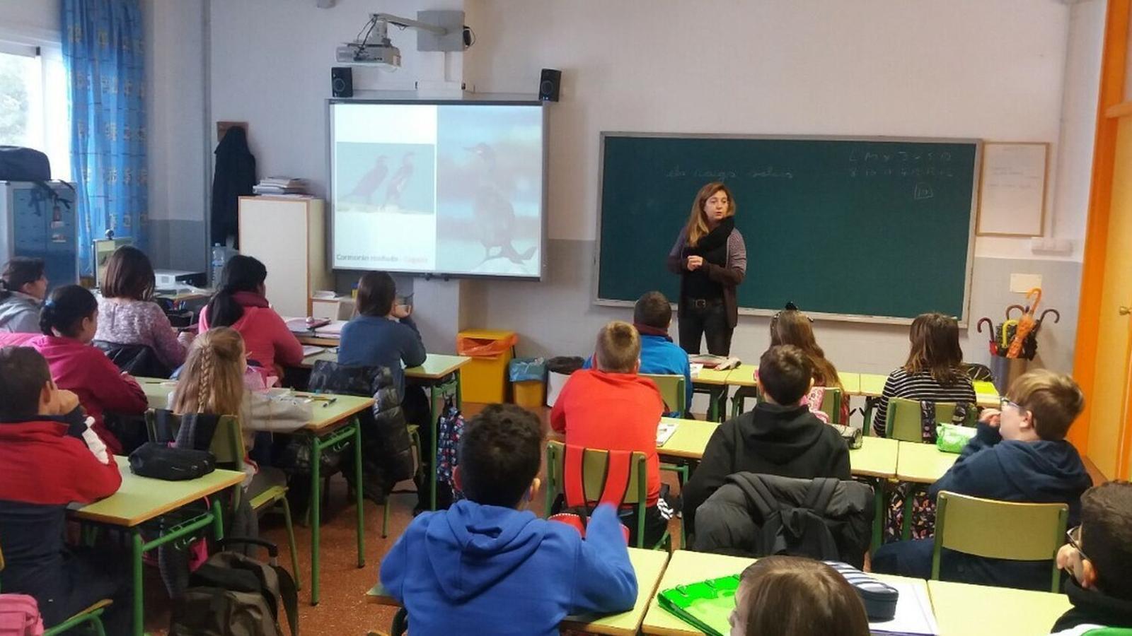 La Junta de Personal Docent de Menorca demana endarrerir el curs escolar