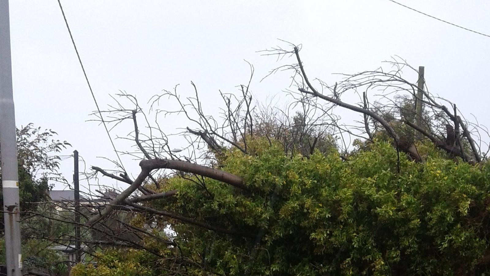 Tres morts i ratxes de vent de més de 150 km/h a Irlanda a causa de l''Ophelia'