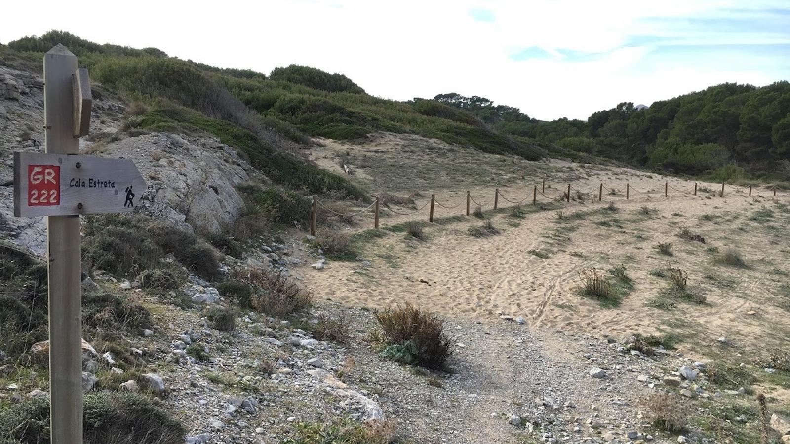 El cordat de Cala Mitjana estava abans molt prop de les dunes amb vegetació, deixant al marge la zona degrada i que s'havia perdut.
