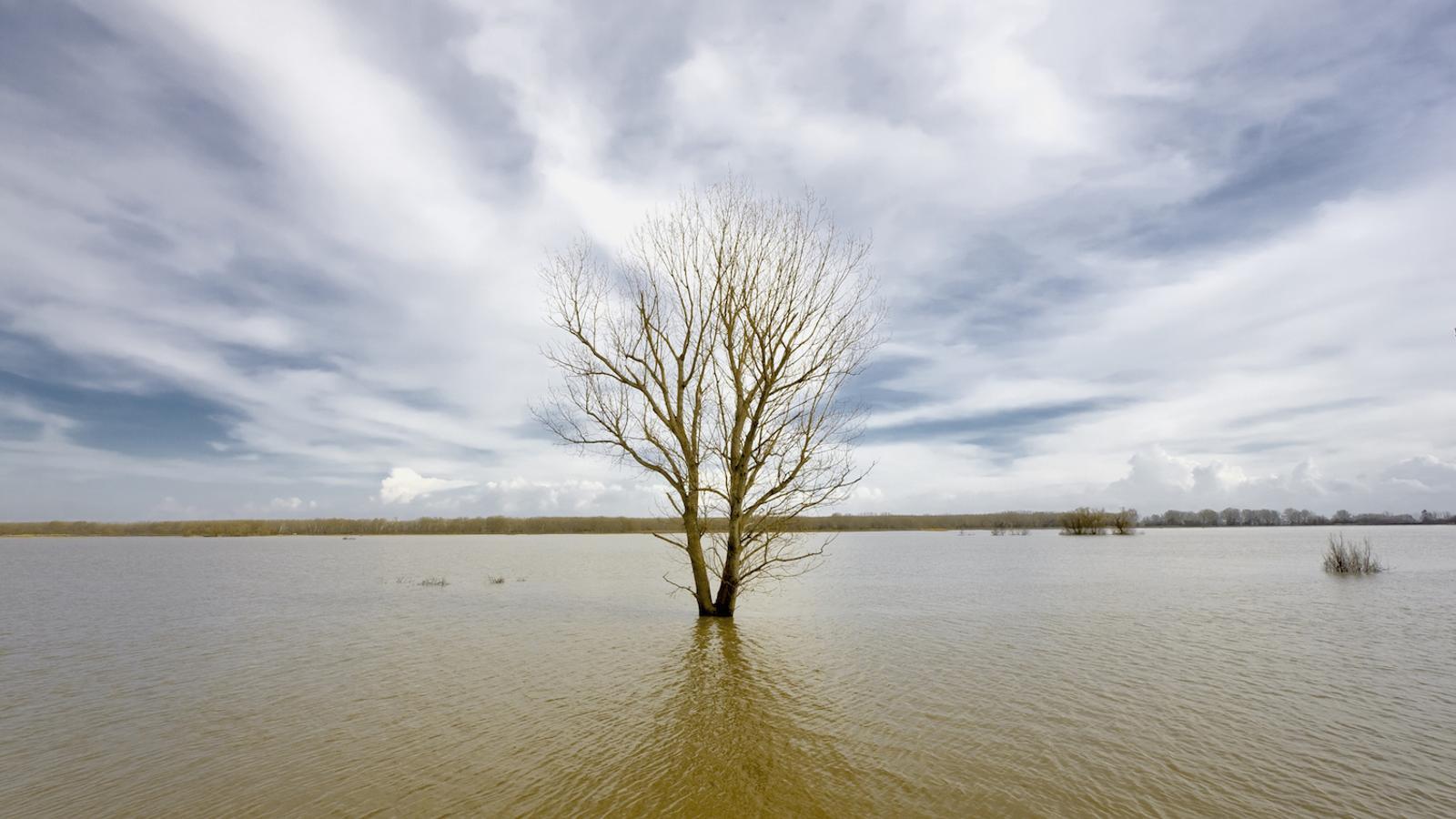 Canvi climàtic: quina part de la culpa és nostra (i quina de la natura)