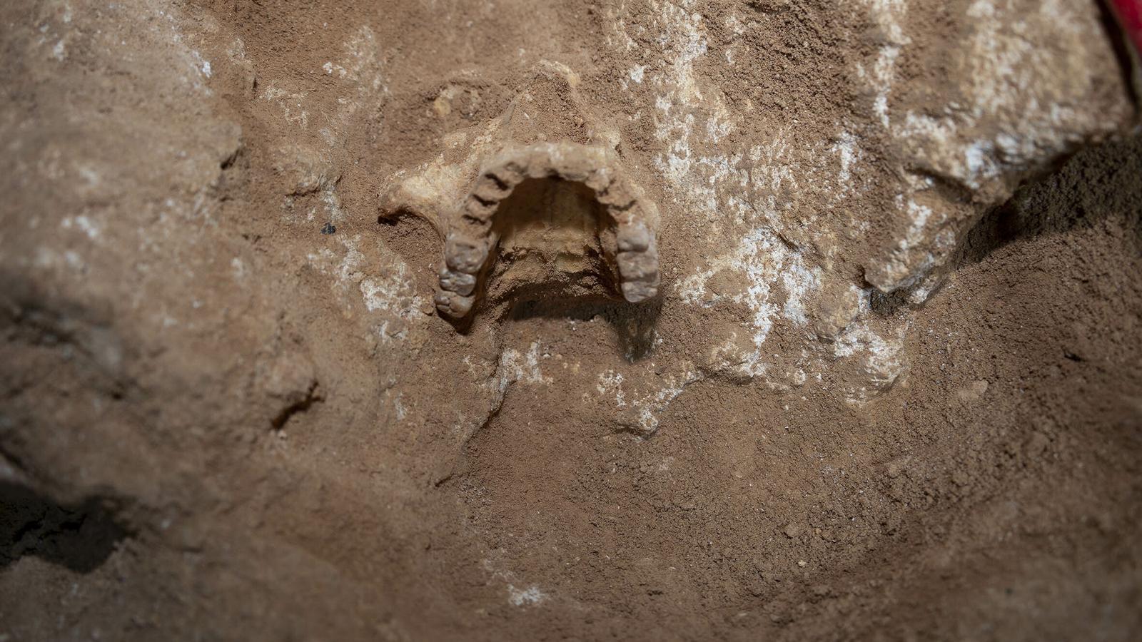 Imatge de la cova 127 de Formentera.