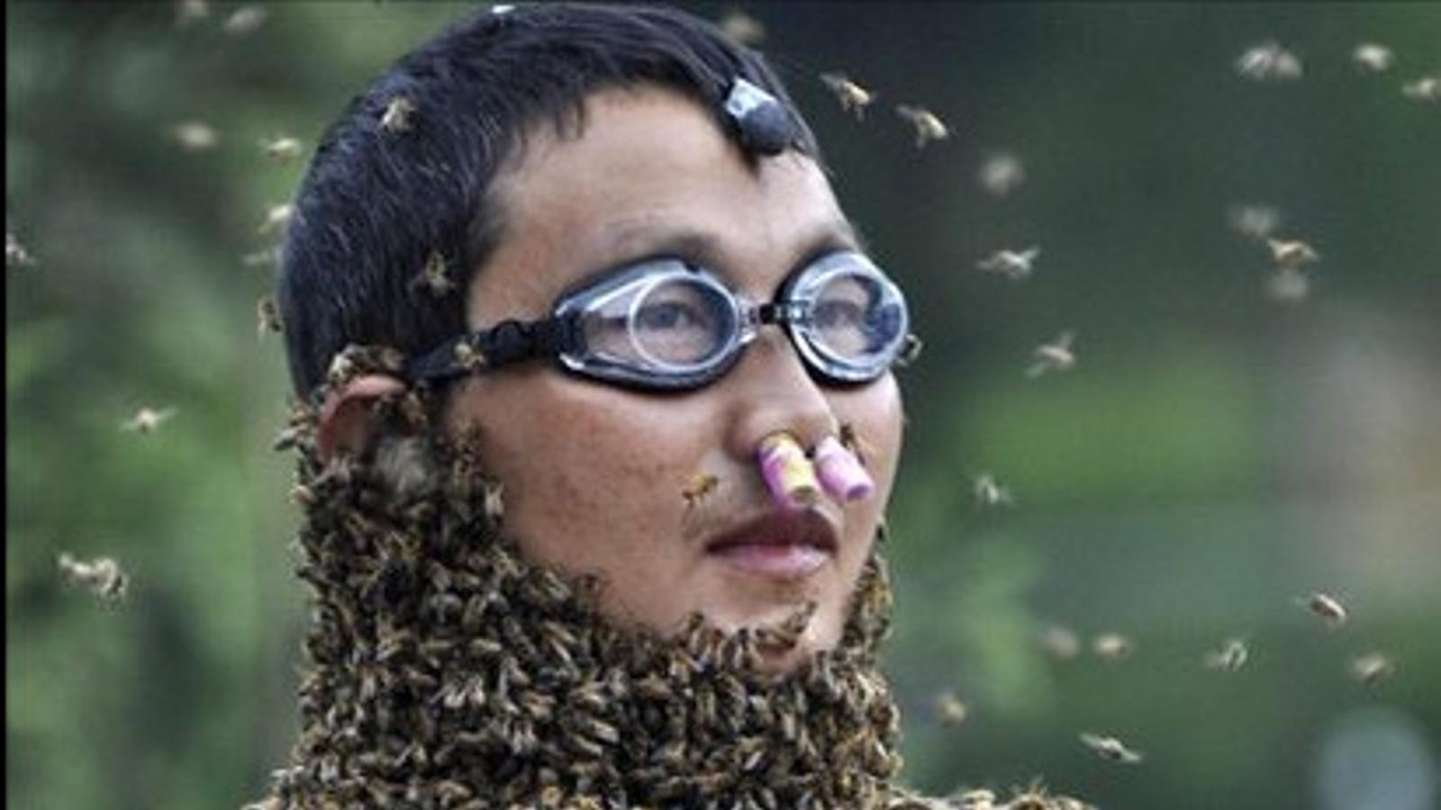 Atraure el màxim d'abelles al teu cos, un concurs com un altre