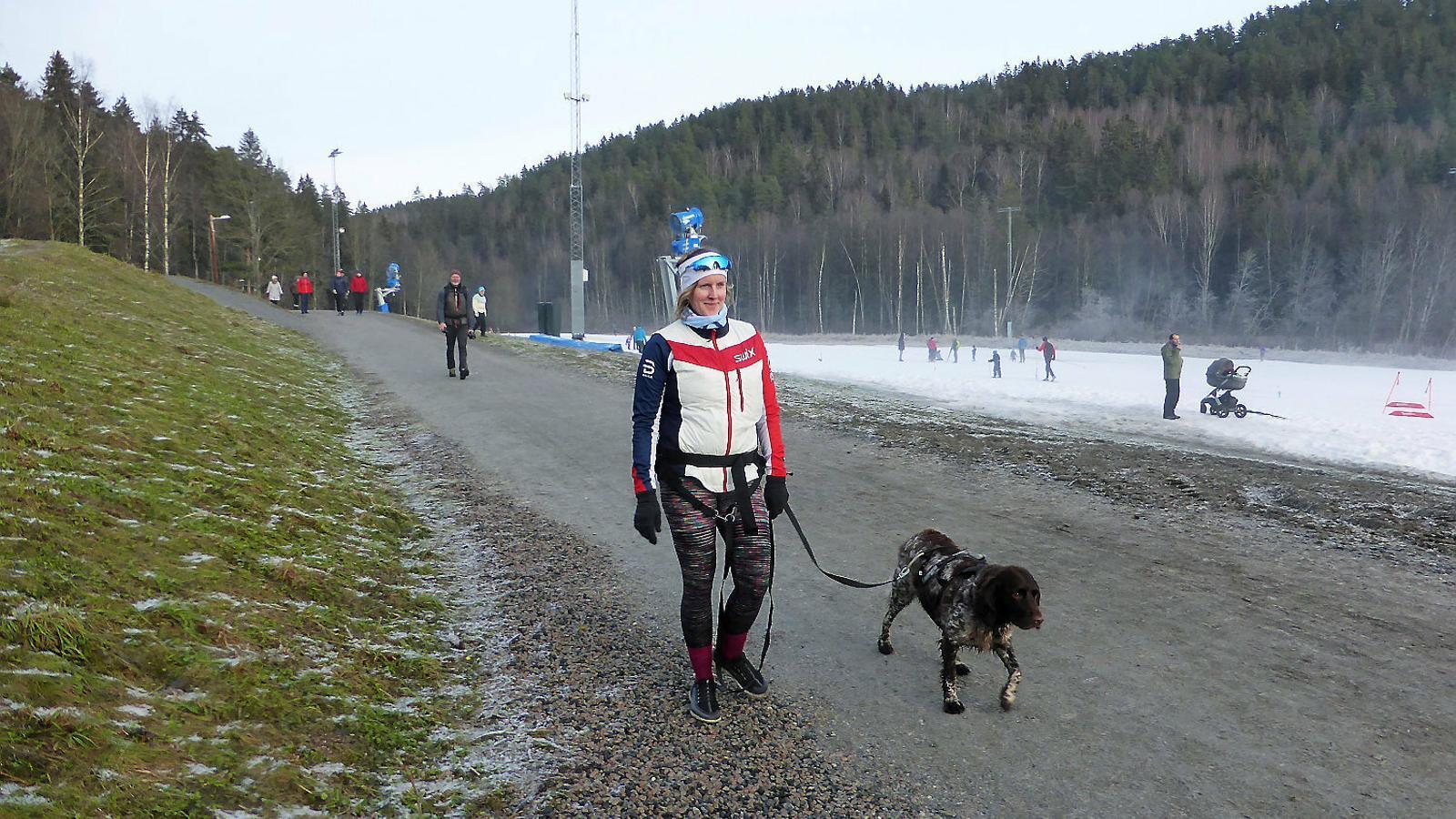 Una dona passejant amb el seu gos en una de les vies més populars d'Oslo,  on no hi ha  la neu habitual en aquesta època de l'any.