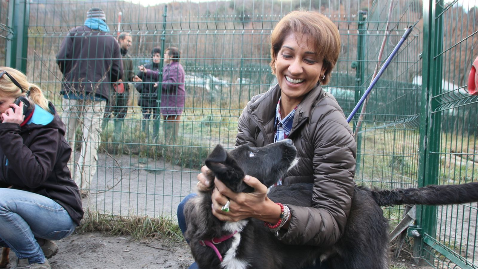 Vídeo: Compromesos amb la protecció dels animals del carrer