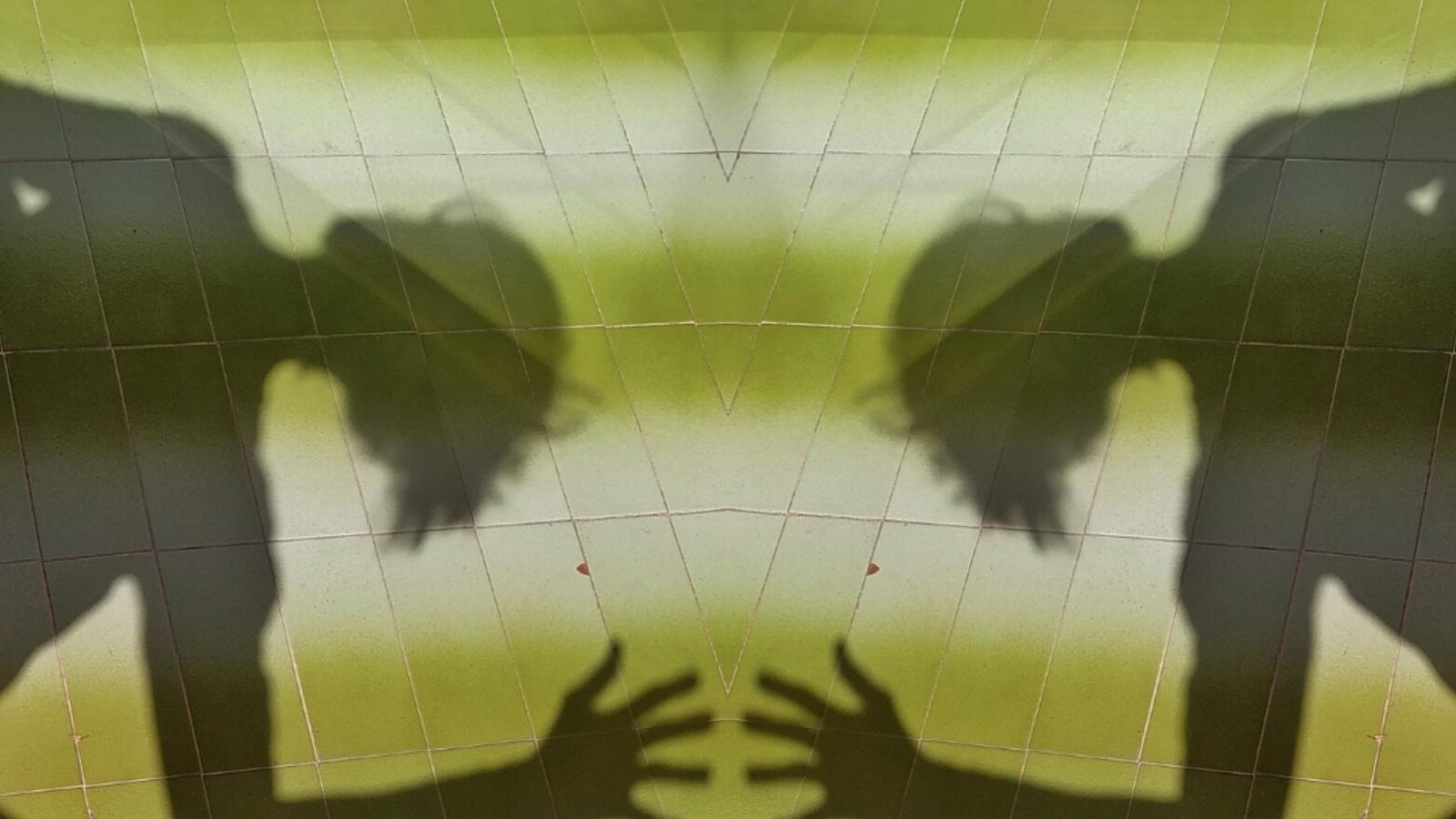 Jugant amb les ombres a casa. Repte fotogràfic impulsat des del Centre Cívic Sant Andreu