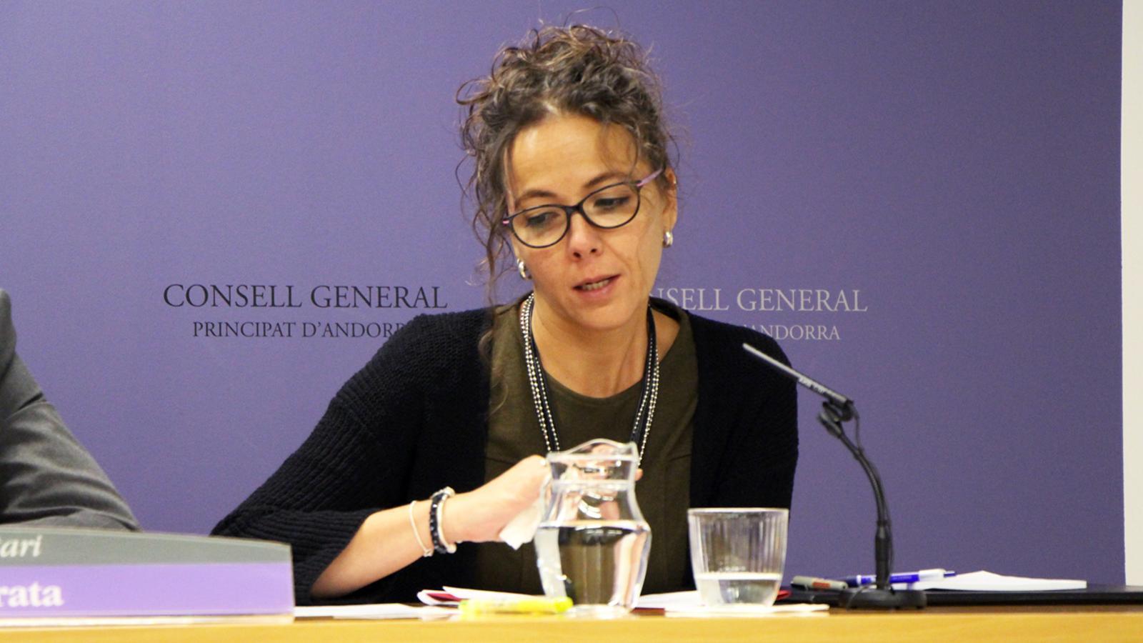 Judith Salazar, en una roda de premsa en el Consell General. / M. P.