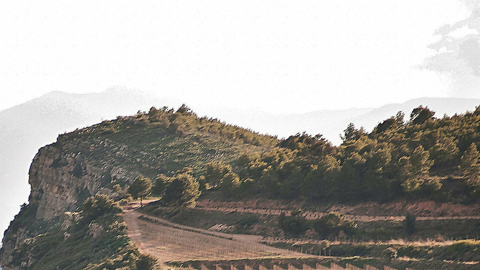 Vinyes sobre terrenys argilosos i calcaris en alçada  a la DO Montsant.