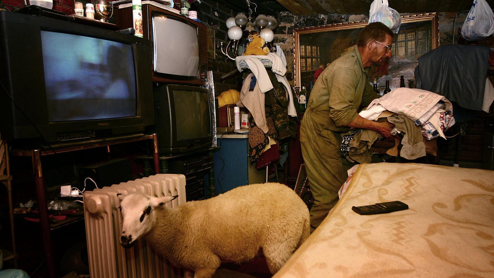 Imatge d'un infrahabitatge a la Sagrera captat el 2004 per Samuel Aranda, en una de les primeres imatges que va fer el fotoperiodista de Santa Coloma de Gramenet. Dintre d'aquest habitatge, en una zona afectada per les obres del Fórum, s'hi va trobar una ovella en un espai mínim