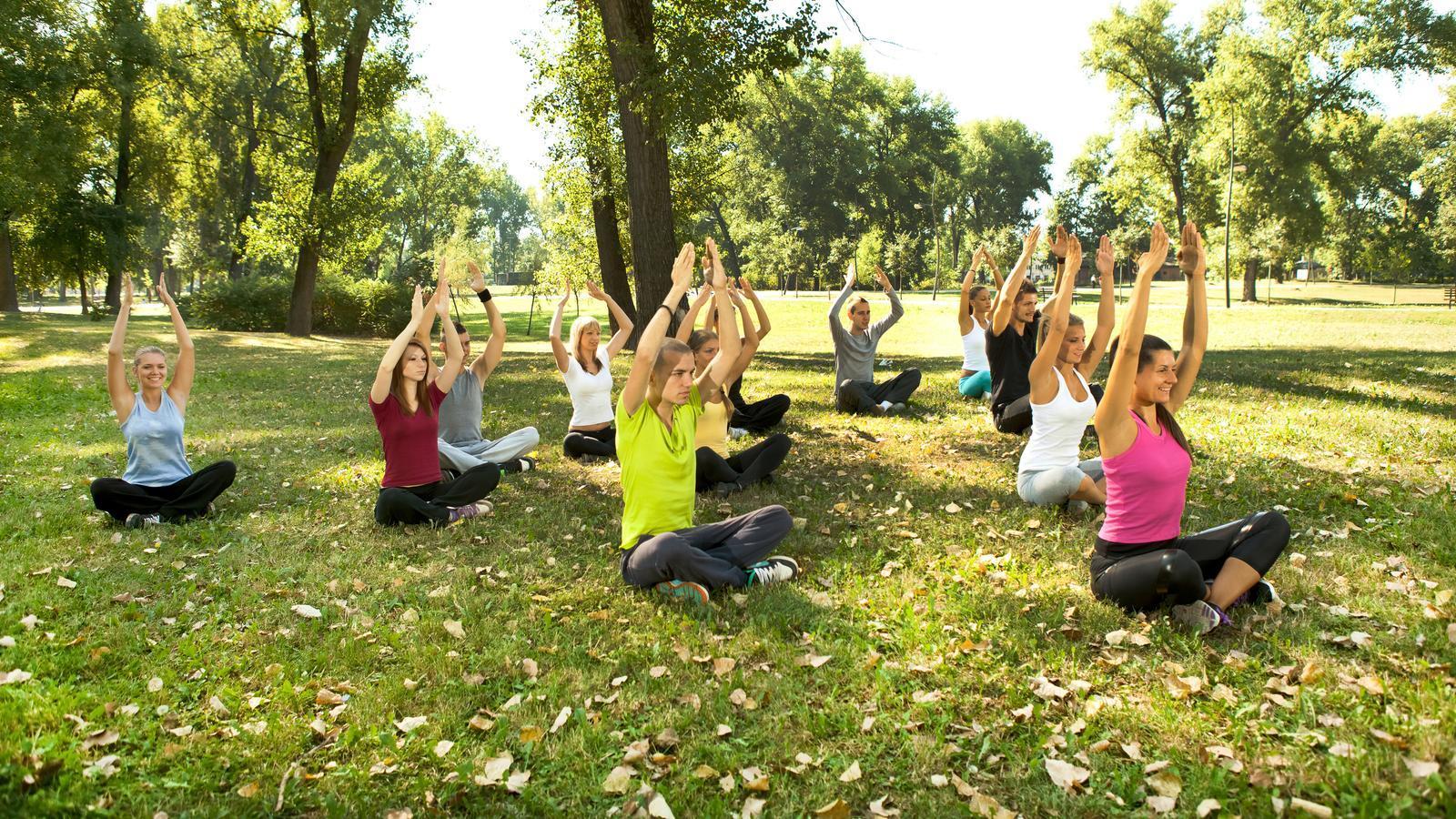 Practica conjunta de ioga en un parc