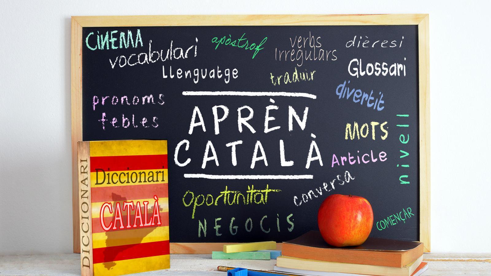 Augmenten un 29% les publicacions locals en català que reben ajudes.
