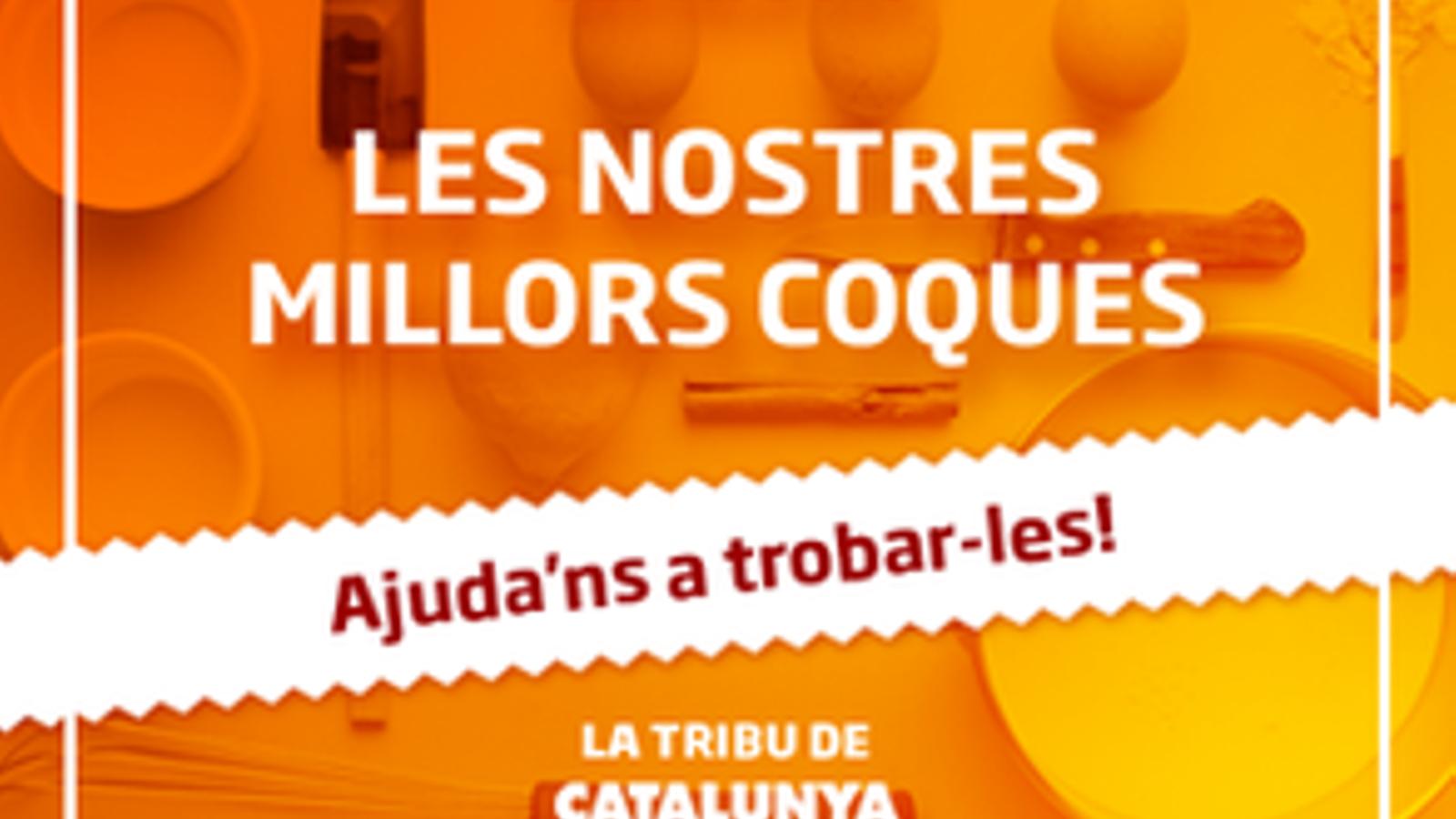 Coques_1549055170_28087640_293x218