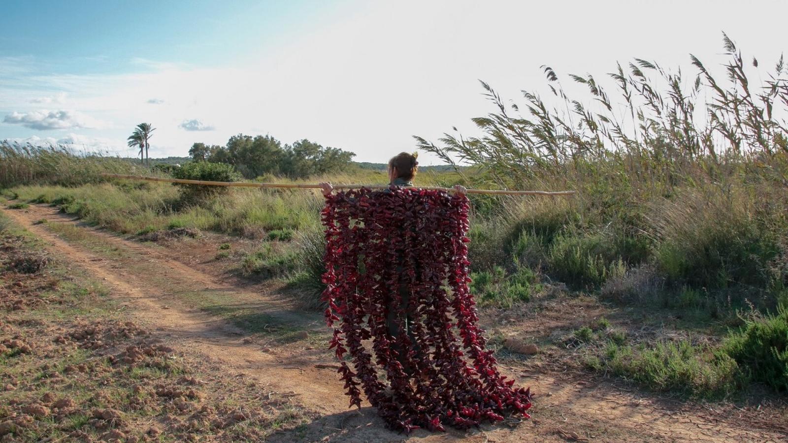 Imatge del projecte de Mònica Fuster sobre les possibilitats tintòries del tap de cortí