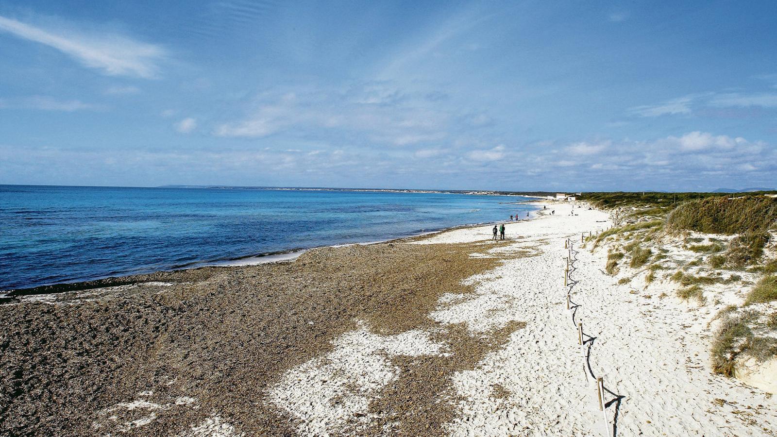 MIGJORN MALLORQUÍ  S'Estanyol, Son Bieló i sa Ràpita són petits nuclis de població, però   Sobretot són llocs connectats a la mar, llocs que conviden, empenyen,   A acostar-se a la mar.
