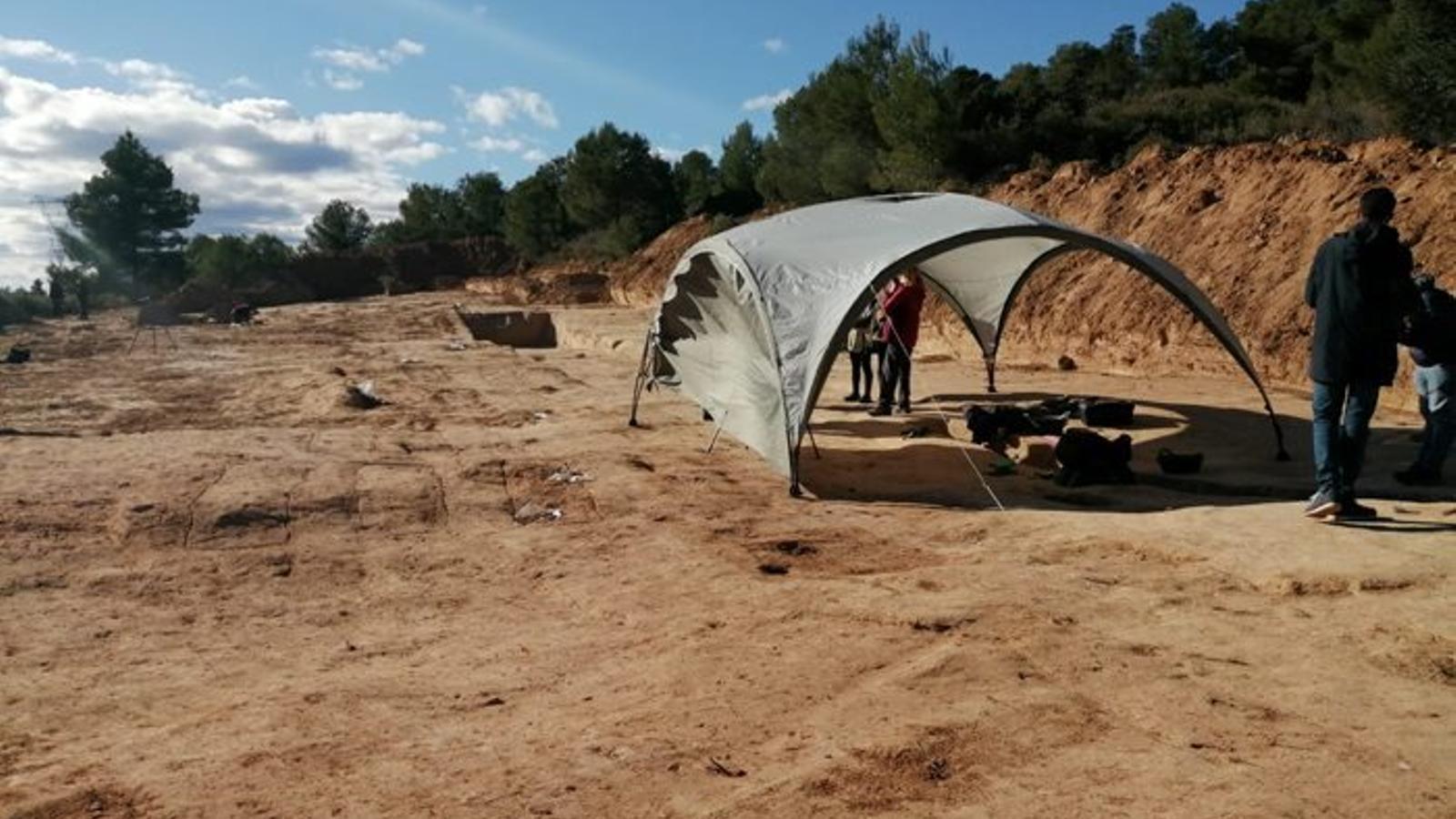 El camp on es treballa a les fosses del Mas de Santa Magdalena