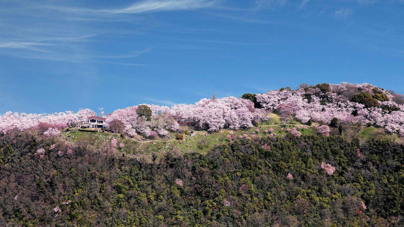 Les Illes Setouchi, al Japó