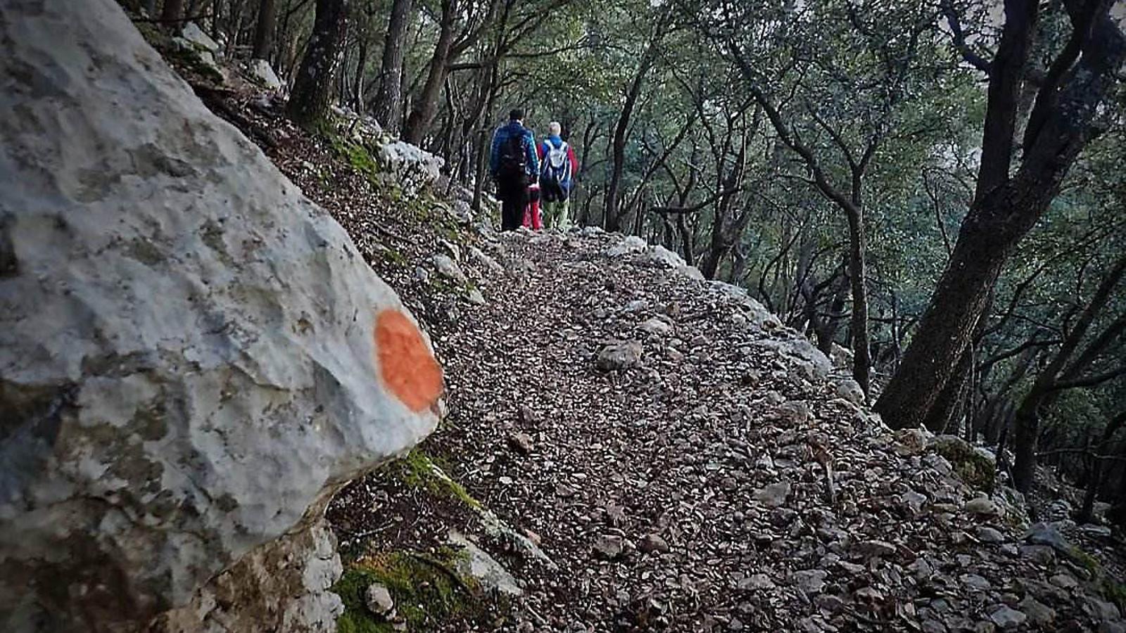 Vandalisme a la Serra de Tramuntana