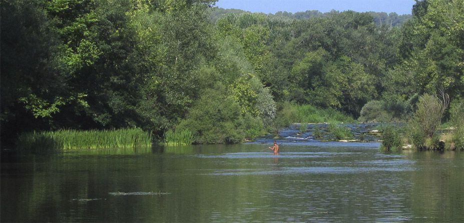 Amazon_river_familiar_nature