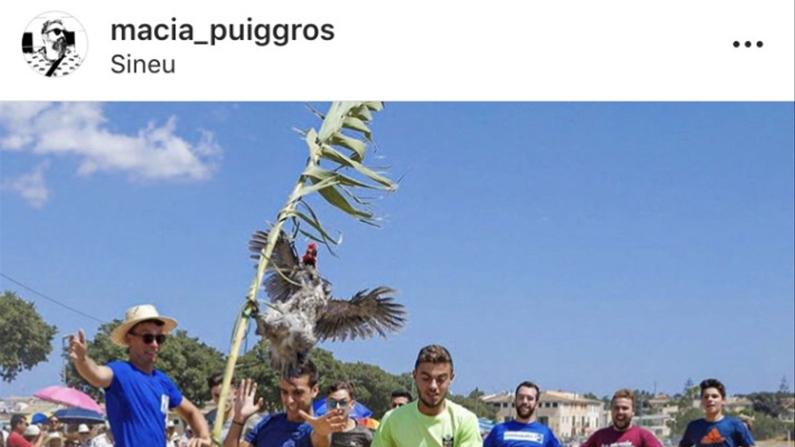 L'Associació Animalista de les Illes Balears vol denunciar Sineu per maltractament animal