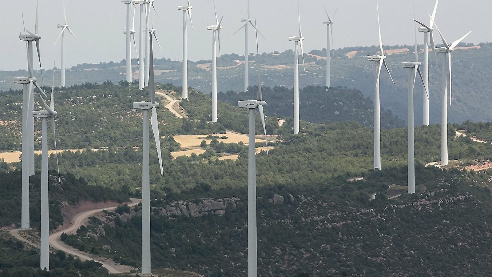 Els anomenats crèdits verds guanyen terreny a Espanya, sobretot en el camp mediambiental.