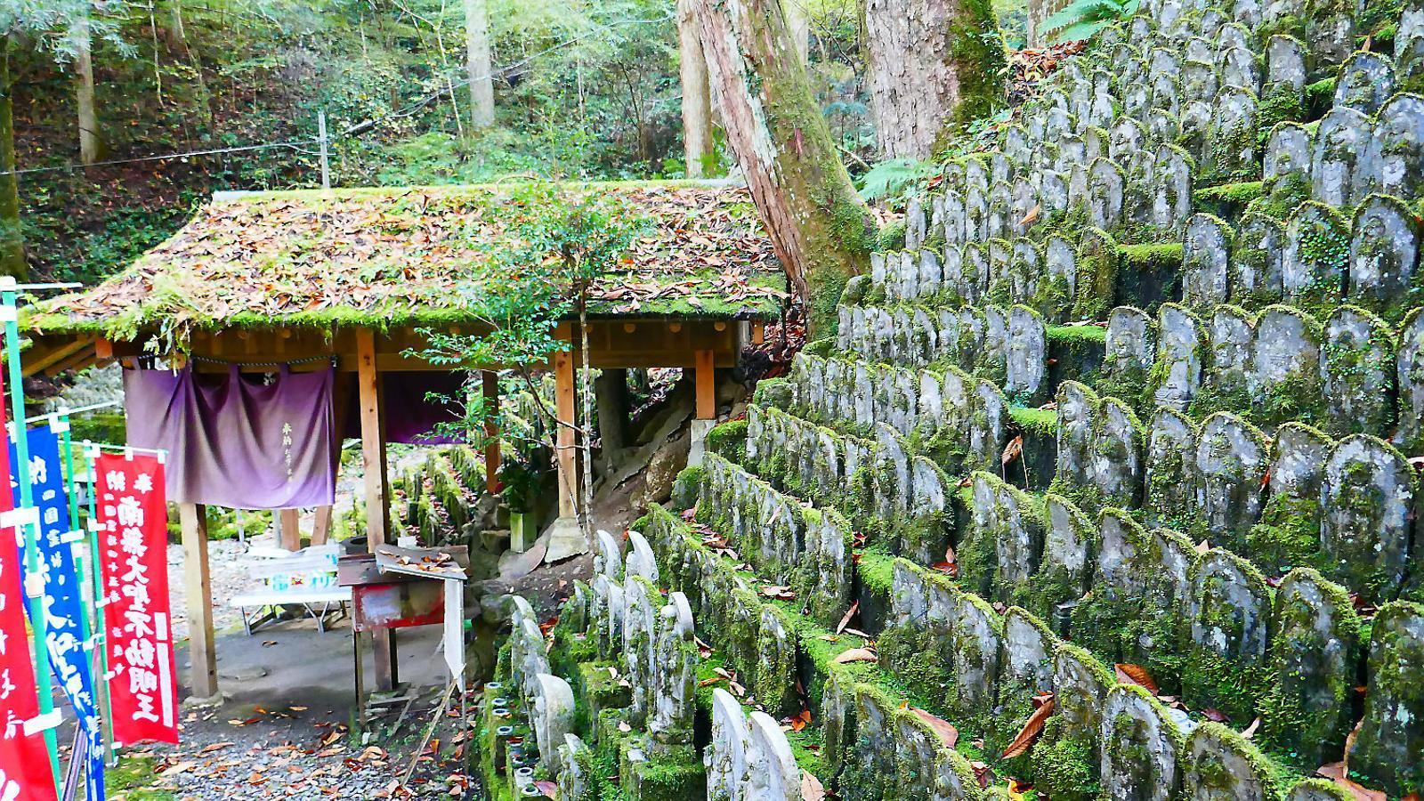 El Camí de Shikoku