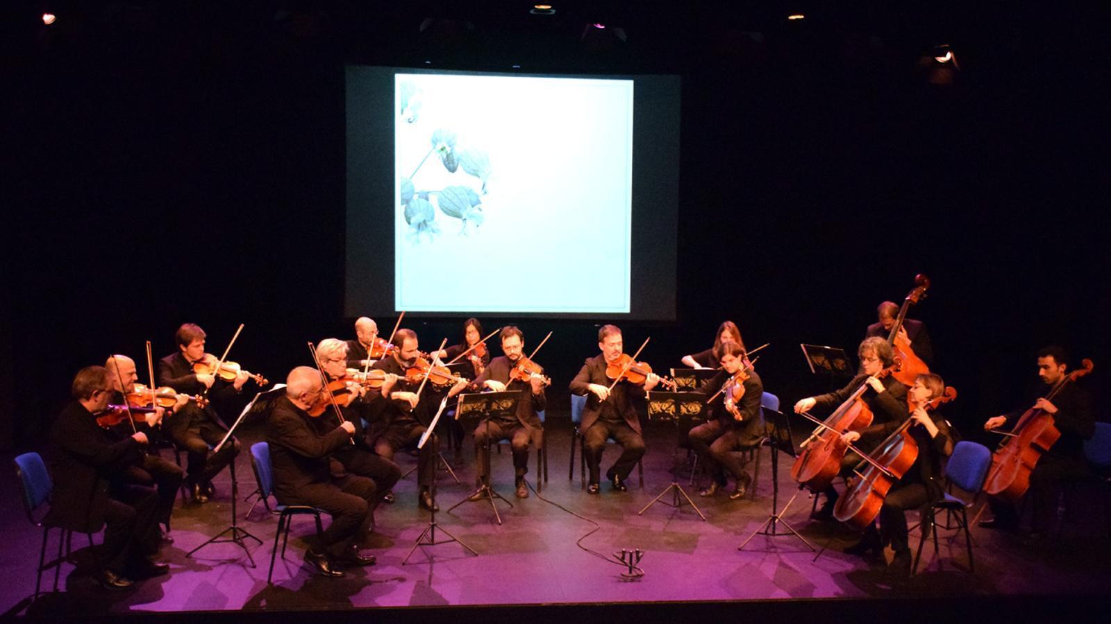 El primer concert del cicle Paisatges, a càrrec de l'ONCA, al Teatre Comunal d'Andorra la Vella. / T. N. (ANA)