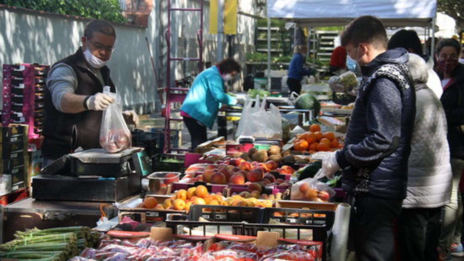 Parada de fruita al mercat. / ACN