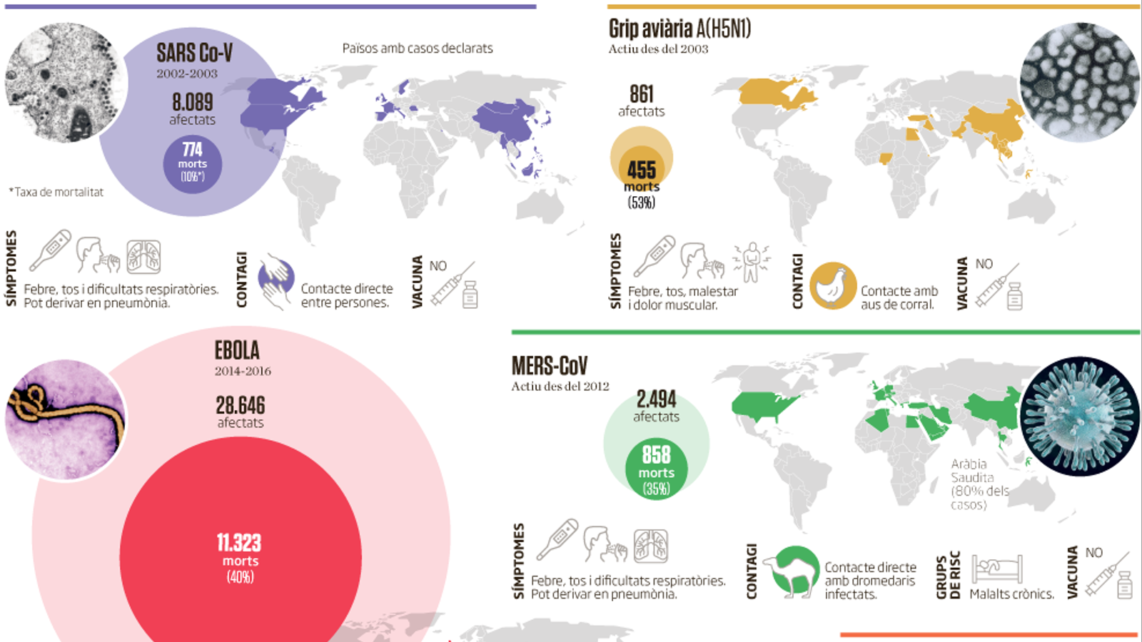 INFOGRAFIA: Virus que han fet tremolar el món