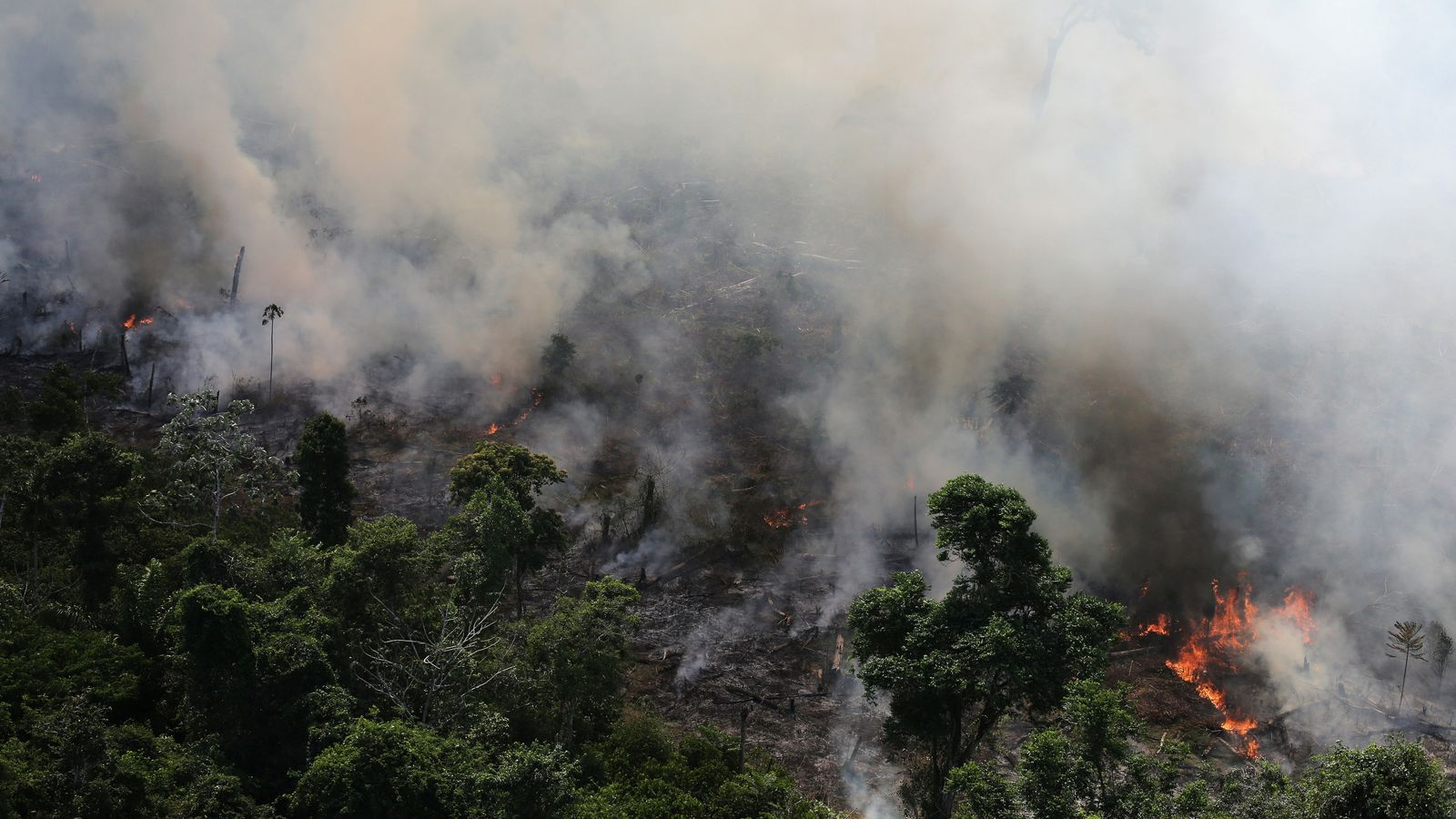Bolsonaro insinua que les ONG estan darrere de la crema de l'Amazones